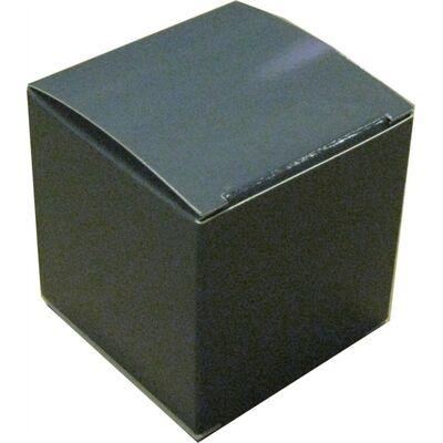 Country Scene Snuff Box