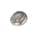 Flat Spiral Pewter Shell Ornament (L)