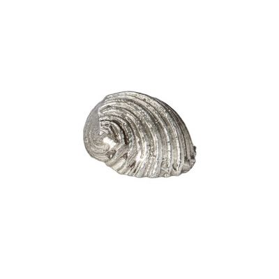Flat Spiral Shell Ornament